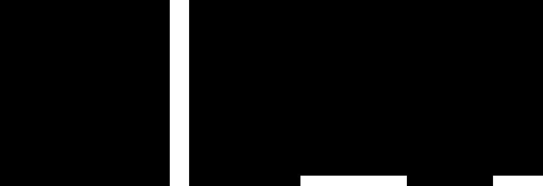 Lido Leiden